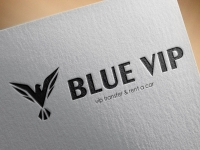 Blue Vip Travel